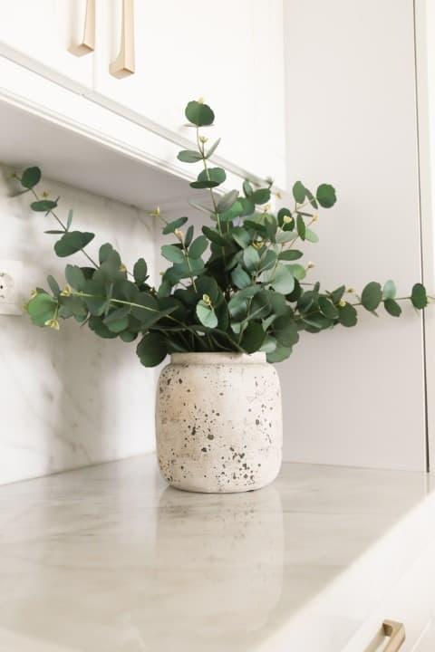 élethű eukaliptusz